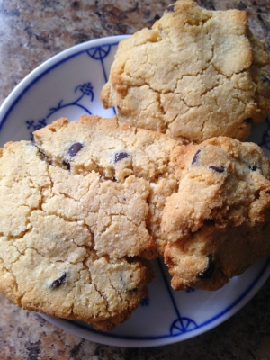 Coconut Flour Chocolate Chip Cookies